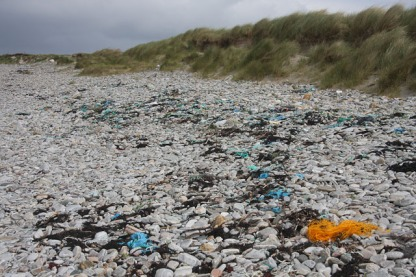 Littering_the_beach_-_geograph.org.uk_-_1470809